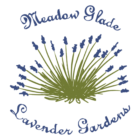 Logo_Design_Medow_Glade_Lavendar